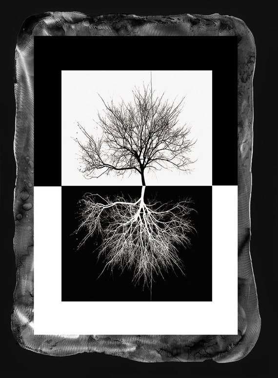 "19""x28""Framed Tree of Life black and white photo print applied to metal with Resin clear coat;larger/smaller sizes available upon request"