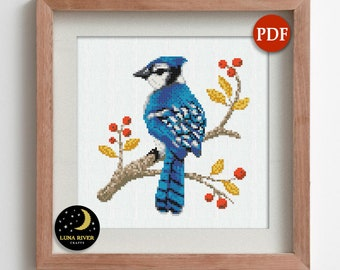 Blue Jay Bird Cross Stitch Kits Beginner Embroidery Kit Handmade Gifts for Mom Birds Embroidery Design Modern Cross Stitch Art