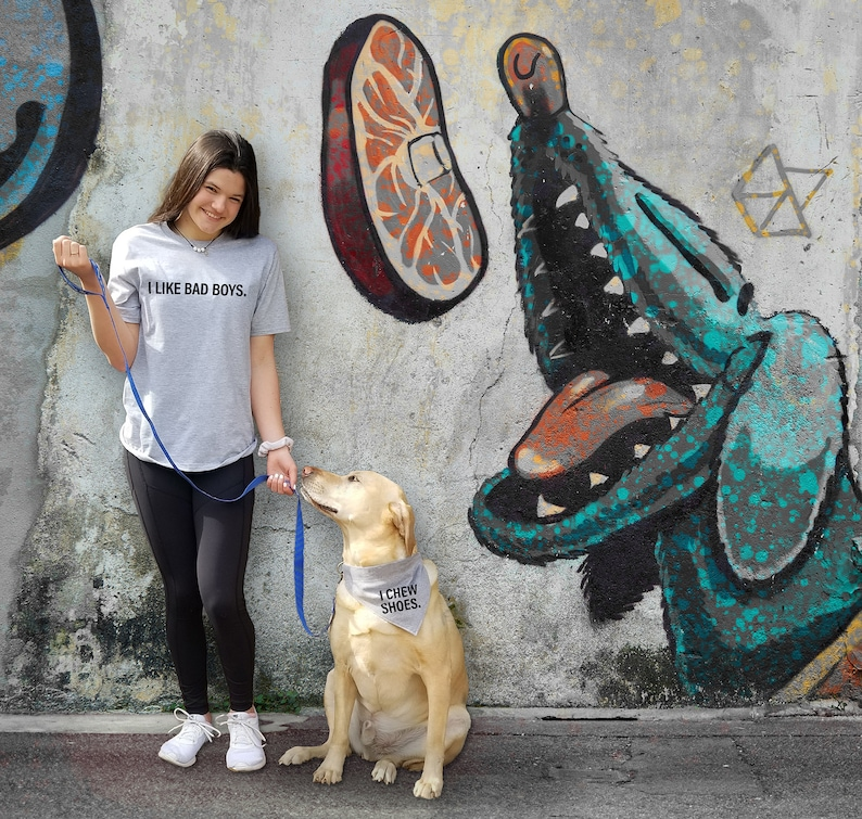 Funny Silly Cotton T-shirt and over-the-collar V-shirt bandana for dogs I chew shoes You Complete Me T /& V-shirt. I like bad boys