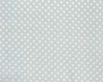 Plastic coated pastel blue cotton fabric has small white stars