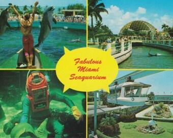 Vintage Miami Florida Seaquarium Postcard, Oceanarium, Aquarium, Ephemera, Souvenir Postcard, Florida Tourist Attraction, Virginia Key