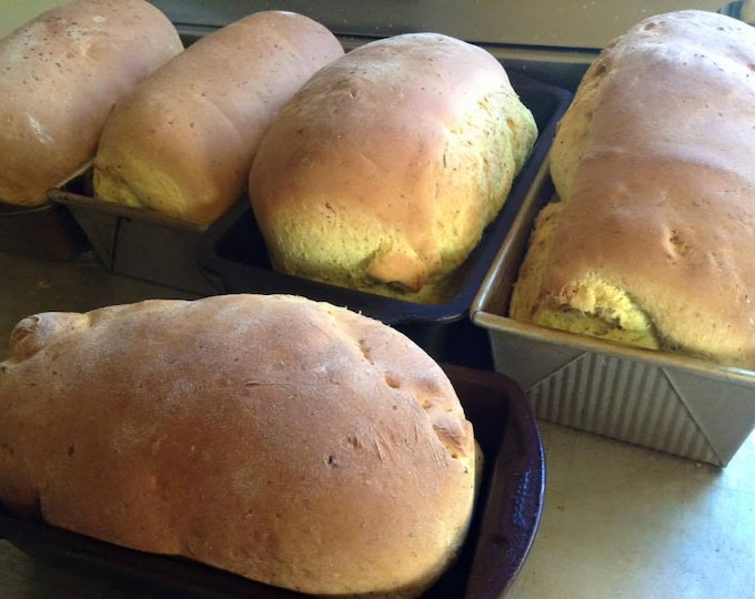 Low sodium turmeric basil bread. No salt but very flavorful!  Two loaves or 12 rolls