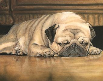 Pug Puddle
