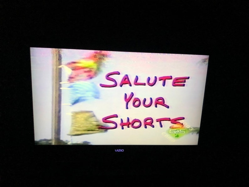 Used dvd Nickelodeon salute your shorts nick gas camp anawanna