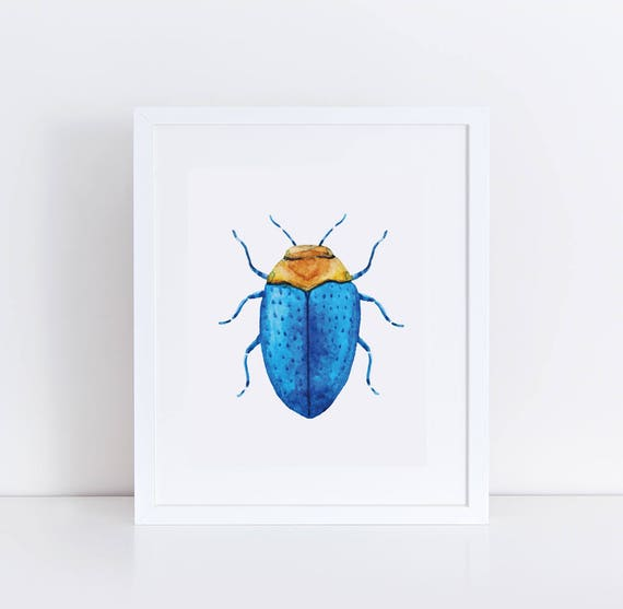 image relating to Printable Bugs identify Printable Insect Artwork / Watercolor Beetle Example / Blue Bug Wall Artwork Print / Insects Nursery Print / Insect Children Area Artwork / Character Nursery