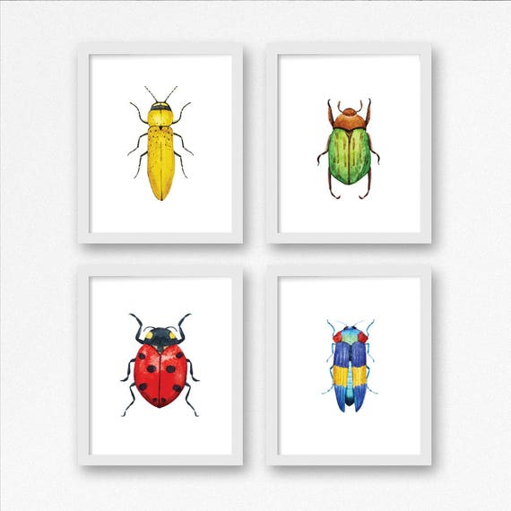 photo regarding Printable Bugs referred to as Printable Bug Artwork Established of 4 / Watercolor Insects Nursery Print / 8x10 Insect Wall Artwork Print / Insect Little ones Space / Character Nursery / Ladybug Beetle