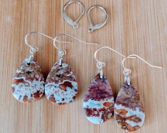 Unique Petrified Wood dangle drop earrings