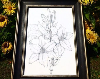 Lillies Illustration, Limited Edition, Dotwork
