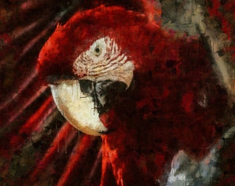 Red Macaw, Canvas Print, Large Wall Art, Painting, Bird, Wild life, nature, palette knife, modern, minimal,