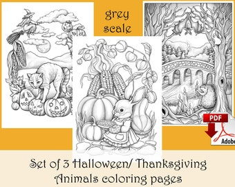 Set of 3 Halloween/ Thanksgiving Animal Coloring pages GREY SCALE - PDF download and print