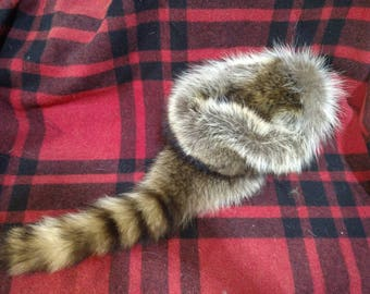 6fa0707f552 Rustic Raccoon Fur Hat - Davy Crockett Style