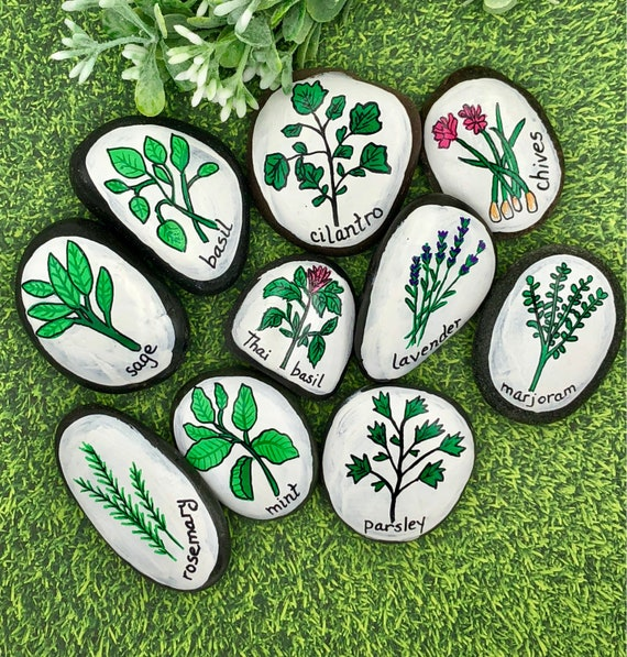 Herb Garden Stones Herbs and Spices Story Stones Gardening