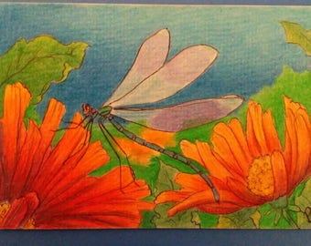 Dragonfly on lilly. 5x7 printed greeting card