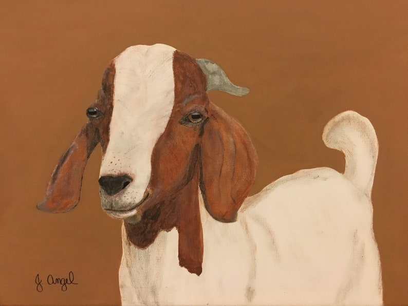 Rudy, goat painting, Boer goats, farm animals, farm, pets, goats