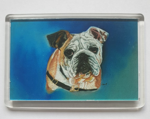 English Bulldog - Fridge magnet - 52 x 76 x 5mm