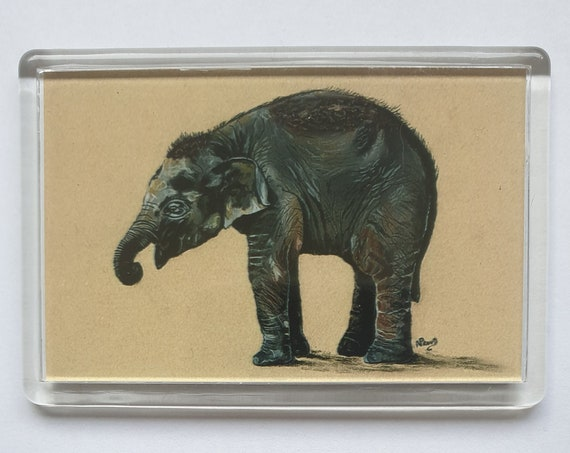 Elephant - Fridge magnet - 52 x 76 x 5mm