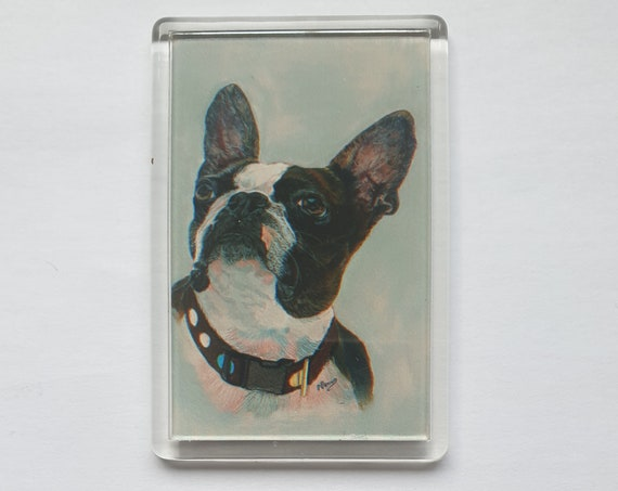 French Bulldog - Fridge magnet - 76 x 52 x 5mm