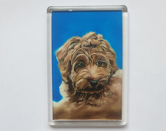 Labradoodle - Fridge magnet - 76 x 52 x 5mm