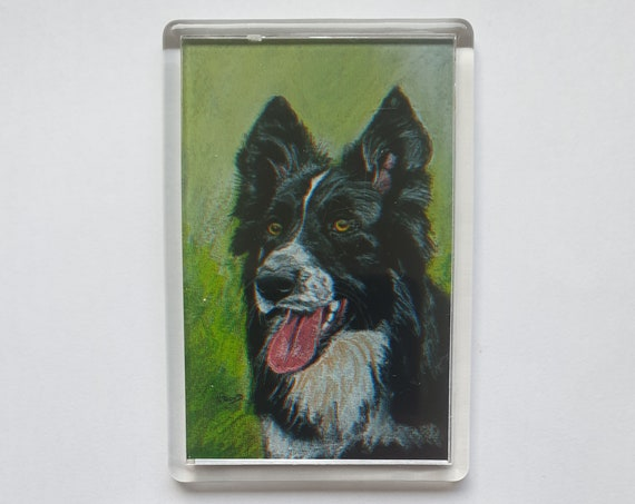 Border Collie - Fridge magnet - 76 x 52 x 5mm