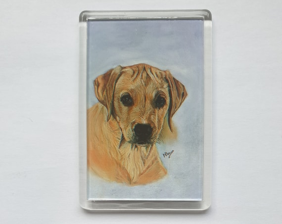 Labrador Puppy - Fridge magnet - 76 x 52 x 5mm