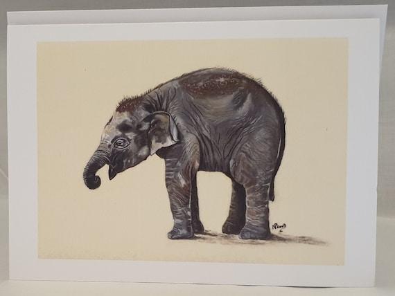 Elephant - colour pastel blank greeting card - 126 x 177mm