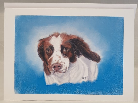 Springer Spaniel - colour pastel blank greeting card - 126 x 177mm
