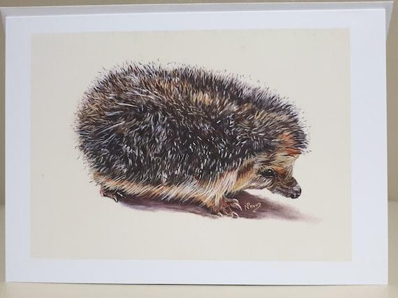 Hedgehog - colour pastel blank greeting card - 126 x 177mm