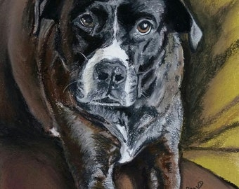 Bespoke Pastel Pet Portrait