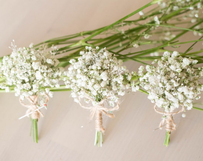 Dried Babies Breath Flowers Boutonniere / Men's Rustic Buttonhole / Groom and Groomsmen Wedding Accessories / White Prom Baby's breath
