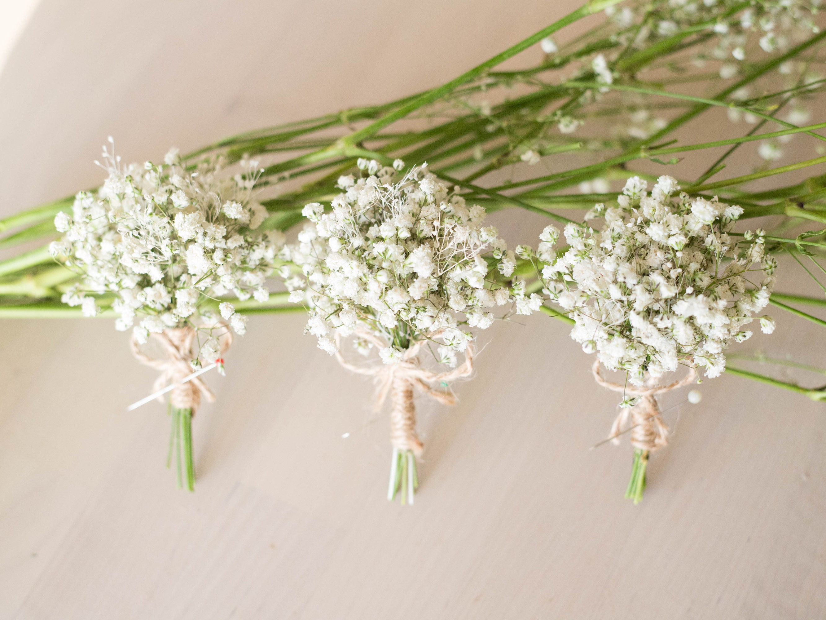 Dried Babies Breath Flowers Boutonniere Mens Rustic Buttonhole