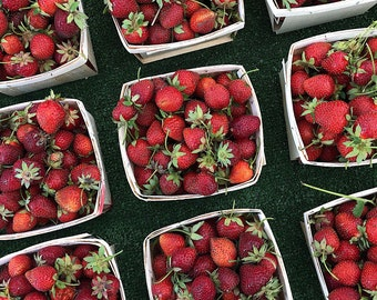 Food Photography, Strawberries For Sale at Farmers Market, Kitchen Wall Print, Red Kitchen Prints, Food Art Print, Square Photo