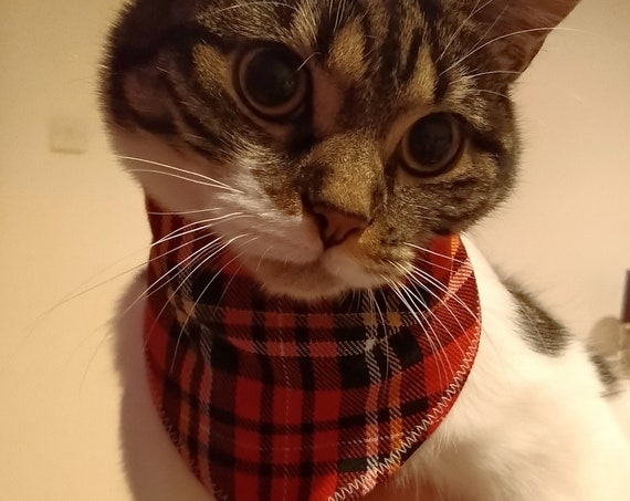 Cat Bandana - Cat Accessories - Safe Cat Accessories - Present for Cat - Gift for Cat - Made to fit - Handmade - Free UK Shipping