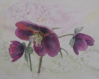 Original Flower Painting