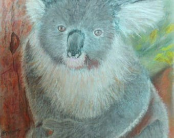 KOALA ORIGINAL ART Painted in Pastels.  Professionally Framed.  Free Postage in Australia 55cm x 54cm Framed.