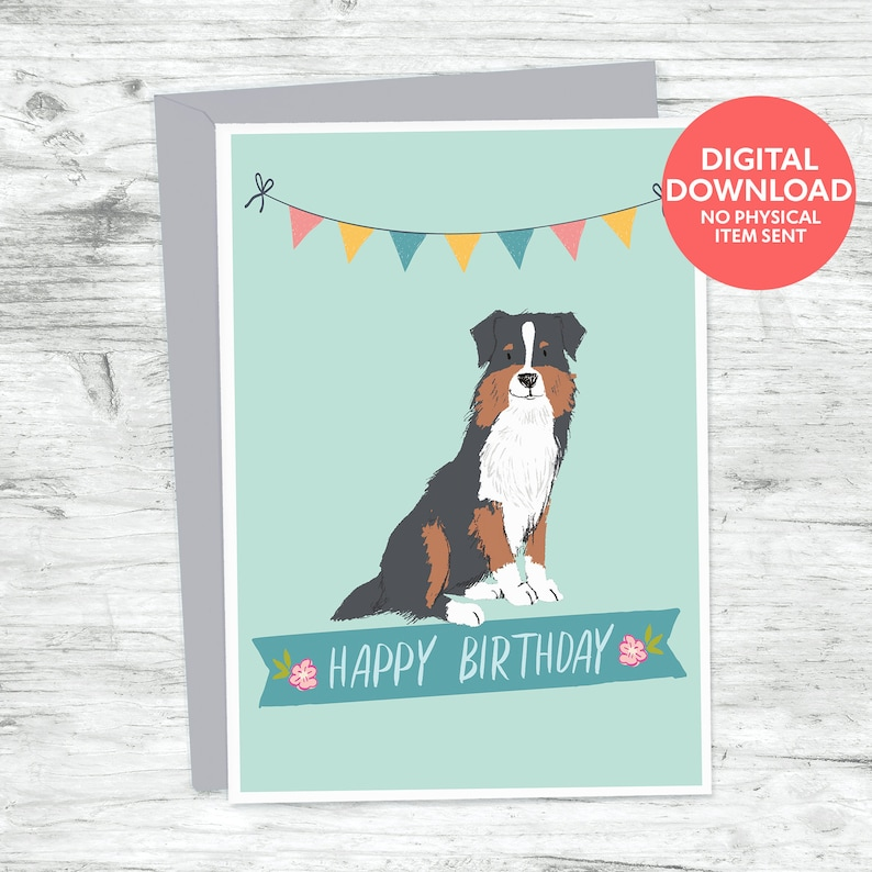 Australian Shepherd Birthday Card