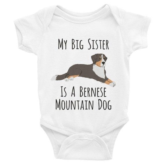 Bernese Mountain Dog Pregnancy Length