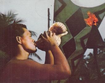 Wailua, Kauai, Hawaii Vintage Postcard - Conch Shell, Coca Palms Hotel, Elvis Presley, Blue Hawaii