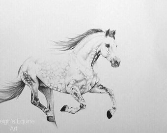 A3 horse drawing PRINT