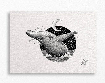 Whale A4 print