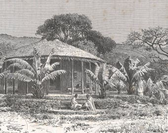 Djibouti 1889, Entotto, House of Mr Ilg, Old Antique Vintage Engraving Art Print, House, Thatched, Roof, Poles, Steps, Plants, Grass, Hill,