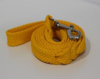Yellow Dog Leash - Basics Range