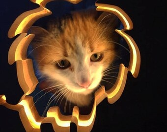 Nightlight for children Lion. Night light lamp baby. Table lamps for bedroom. Сhildrens nightlight. Nursery projector light kids gift