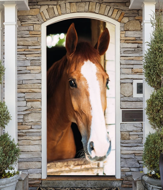 Bay Horse Door Covering Removable and Reusable