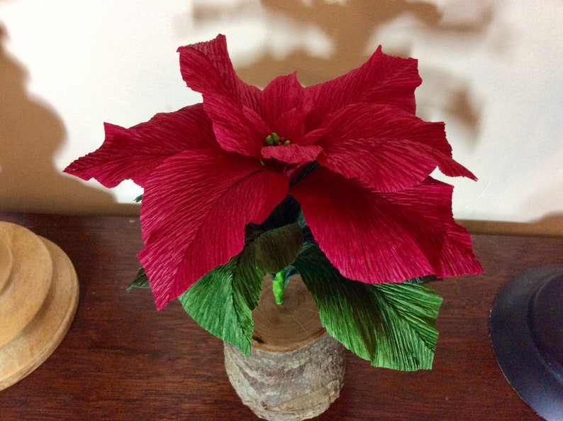 Christmas Flower Realistic Crepe Paper Poinsettia Handmade Single Stem Flower Set In Apple Wood Table Or Shelf Decoration