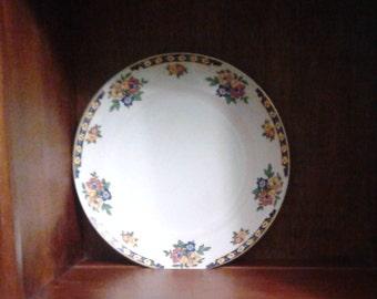 Bright, multi-colored semi-porcelain plates, Sampson Bridgwood & Son Ltd, England