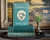 Old Vintage Green Books Rustic Shabby Book Stack in Greens Set 3 Antique Decorative Collection in Table or Bookshelf Decoration Home Decor