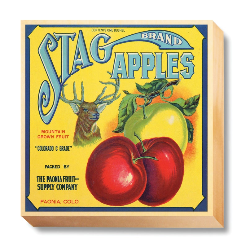 Vintage Crate Art Stage Brand Apples art print / wooden canvas image 0