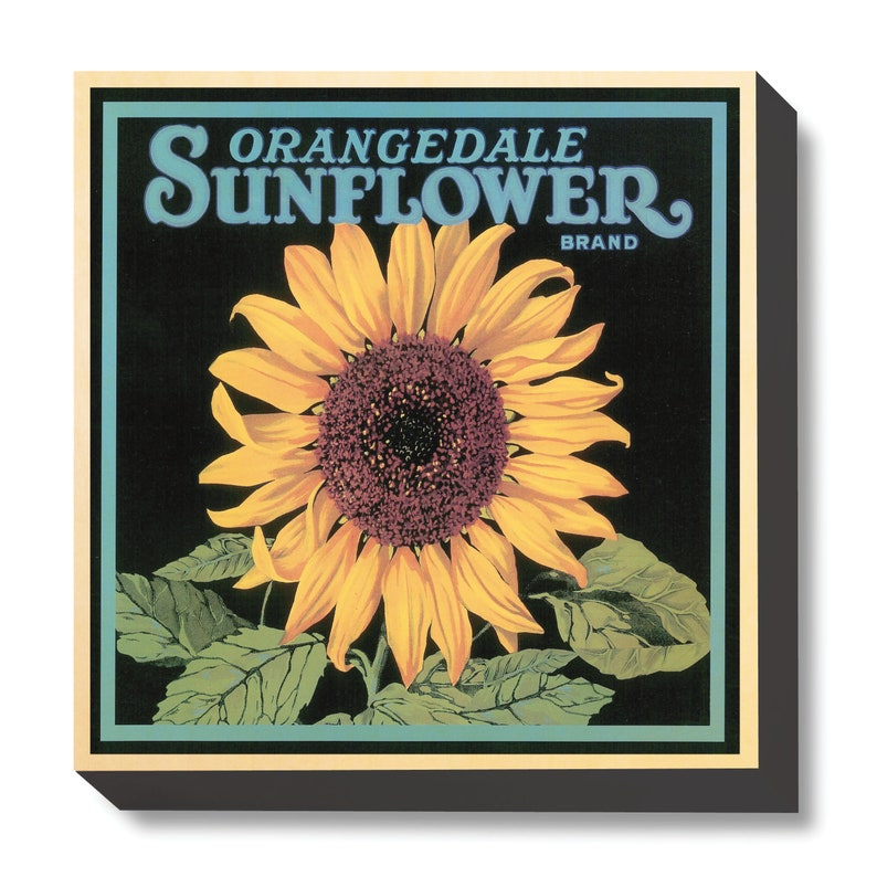 Vintage Crate Art Orangedale Sunflower art print / wooden image 0