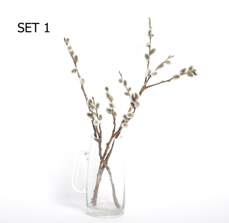 Pussy Willow Branches dried pussywillow branches set of 3 image 0