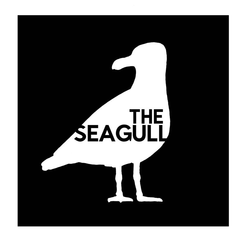 The Seagull: a fully illustrated comic poem image 0